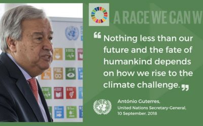 17 Goals to Transform Our World. UN Climate Action Summit, the 23 September 2019 in New York