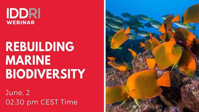 Conference Public event : « Rebuilding marine biodiversity »
