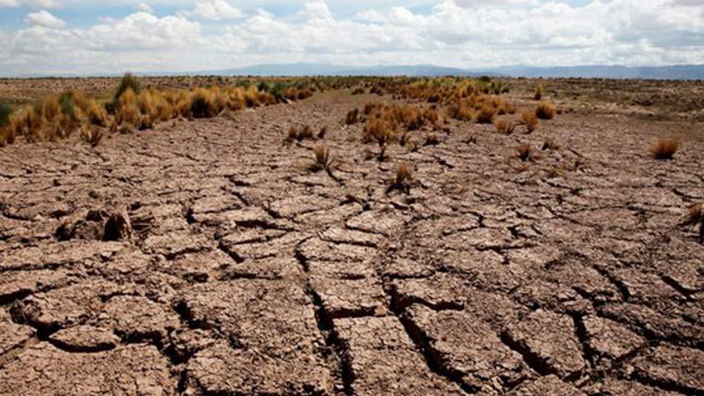 La crise sanitaire et le changement climatique