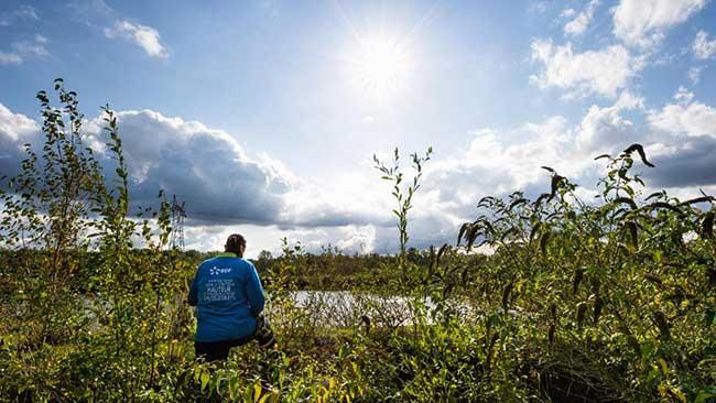 EDF, une approche positive de la Biodiversité